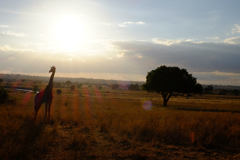 La Tanzania | Una terra che insegna